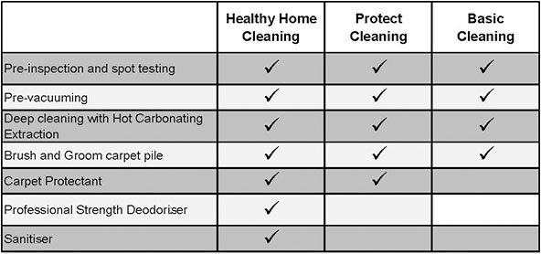 chem-dry-protectant-and-sanitizer-cleaning-packages